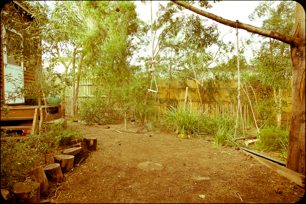 View of our garden
