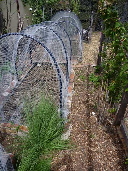 Bird netting or shade cloth