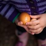 Egg on track