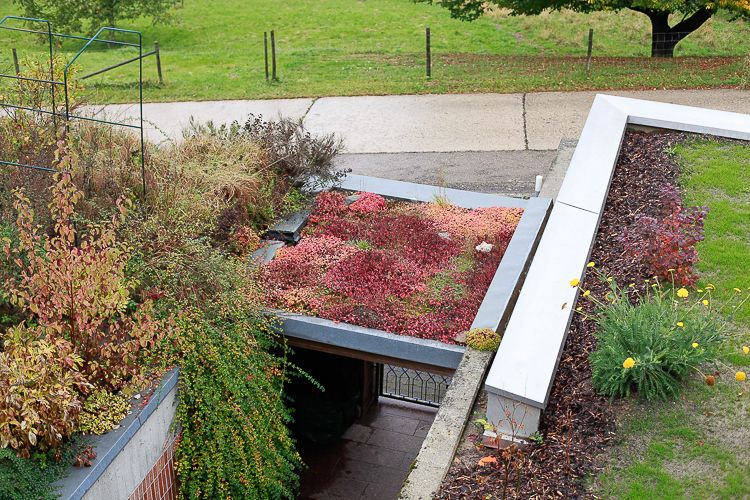 A small roof above a walkway is also planted out.