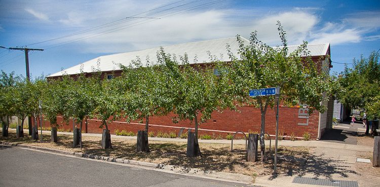 Apple orchard outside the Daylesford library, with accompanying bike parking! I love it!