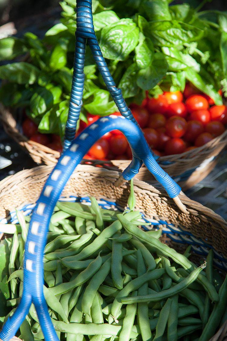 Beans, basil, tomatoes...