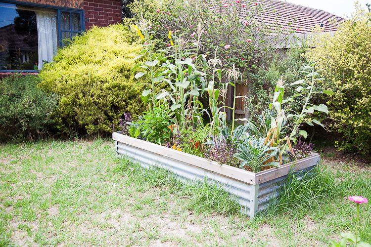 At this home a raised vegetable garden bed has been installed.