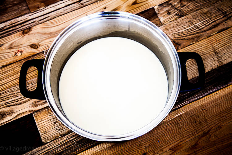 Yogurt (1 of 10)