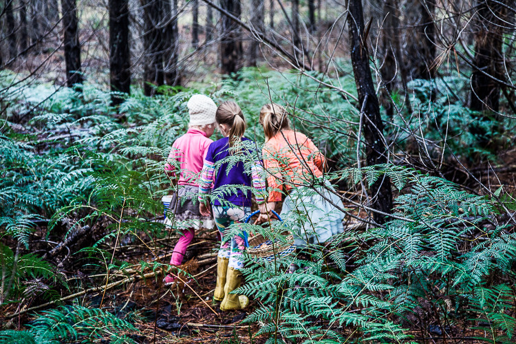 Looking with friends of all ages. Children love foraging. They are quick learners and are quick to teach others.