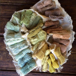 Natural Dyeing Workshop at Orto Farm, Sunday First of September
